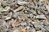 Photo Texture Sharp Fragments Of Rocks.