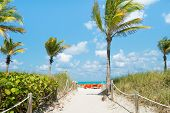 Path leading to the beach on a sunny day in South Beach, Miami