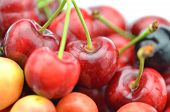 closeup of ripe, fresh and sweet cherries