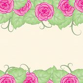 background with roses on top and bottom