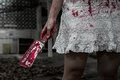 Suicidal Girl In Haunted School With Cleaver
