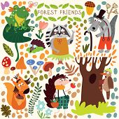 Vector Set Of Cute Woodland And Forest Animals. Squirrel, Frog, Woodpecker, Hedgehog, Wolf, Raccoon,