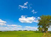 Idyllic Rural Farmland, Cotswolds Uk