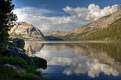 pic of polly  - A reflection on Tenaya Lake Yosemite National Park - JPG