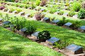 Kanchanaburi, Thailand - May 23, 2014: The Kanchanaburi War Cemetery, Thailand