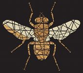 Editable vector shattered mosaic illustration of a fly