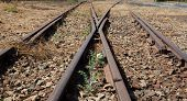 Old Used Railway Tracks In And Small Flower In Colour