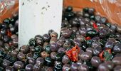 Genuine Black Olives For Sale On The Market Of Southern Italy