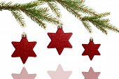 Star decorations on tree on white background
