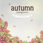 Image of autumn background with maple leaves, oak, chestnut, rowan berries and acorns