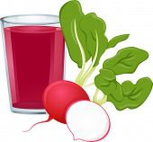 Illustration Featuring a Glass of Radish Juice with Fresh Radish on the Side