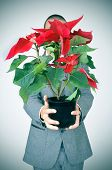a young man in suit bringing a poinsettia plant to the observer