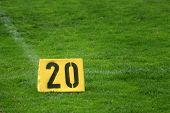 Twenty Yard Mark