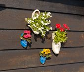 Dutch Traditional Shoes.