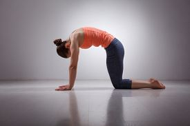 foto of ashtanga vinyasa yoga  - Beautiful sporty fit yogini woman practices yoga asana marjariasana  - JPG