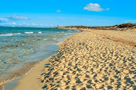 picture of nudist beach  - panoramic view of the Es Cavallet beach - JPG
