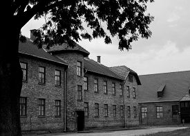 image of auschwitz  - picture of the inside of Auschwitz concentration camp - JPG