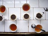 Different Tea Breeds For Tasting