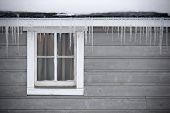 Shed Window In Winter
