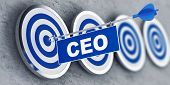 Chief Executive Officer (CEO) concept with a banner on an arrow penetrating the center bulls eye on  poster