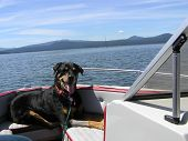 Bonnie In Boat
