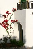 White wash stone house with arch door entrance and balcony, bougainvillea growing by the wall.