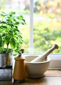 A window display in the kitchen with a pot of fresh basil, pestle and mortar plus a pepper mill.