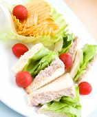 Delicious plate of tuna sandwich with salad