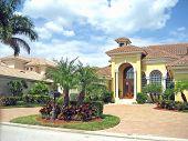 Tony Tropical Properties