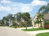 Tropical American Street 4.Jpg