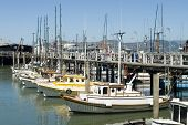 Marina In Fisherman Warf