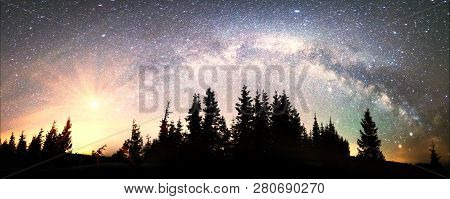 Milky Way Over The Firtrees