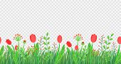 Spring Grass Seamless Border Vector With Flowers. Floral Wildflower Springtime Nature Plant Element  poster