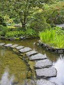 . A path from the wet stones, laid through a pond in Japanese to a garden