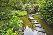 A footpath from stones laid with brick through a fine pond in Japanese garden, during a rain
