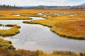 stock photo of boggy  - Twisting small stream on flat marshy plain - JPG