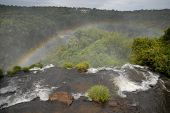 Iguazu Waterfalls With Vrainbow. Argentina