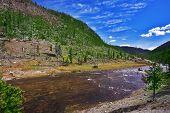 Río Gibbons superficial en el Parque Nacional de Yellowstone