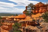 A red canyon  in state of Utah in the USA
