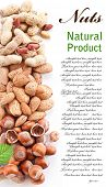 Group mixed nuts. Space for text on the right.