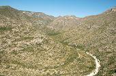 mckittrick canyon mountains