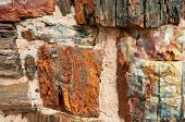 stock photo of paleozoic  - Agate House - JPG