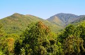 Great Smoky Mountains in early fall