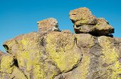yellow moss on rock hoodoos at Chiricahua National Monument poster
