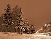 Winter Evening In City.