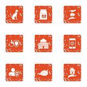 Animal Remediation Icons Set. Grunge Set Of 9 Animal Remediation Icons For Web Isolated On White Bac poster