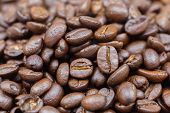 Brown Roasted Coffee Beans For Food And Drink Design. Coffee Beans Texture Or Coffee Beans Backgroun poster