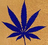 cannabis leaf illustration, computer generated