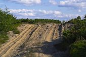 picture of sakhalin  - sandy road in the forest tundra landscape on a sunny day - JPG