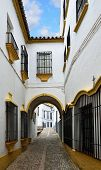 Narrow Street In The Ancient Ronda